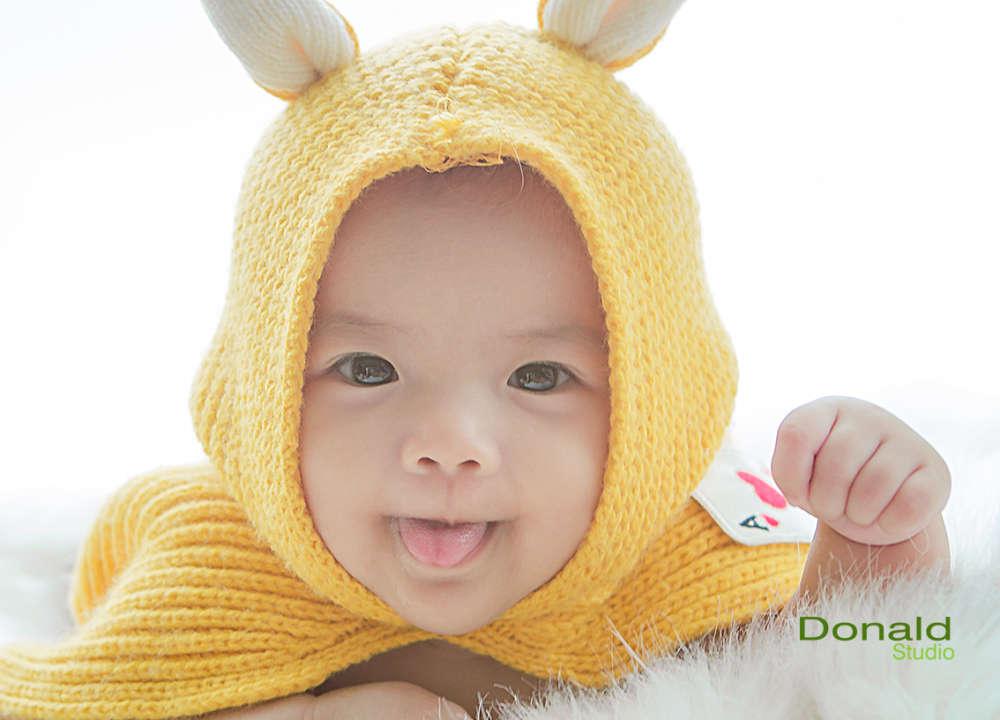 Thỏ con dễ thương - Donald studio